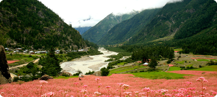 Banjara Camp & Retreat - Sangla