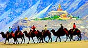Camel ride at  Hunder with Deskit Gompa as a backdrop