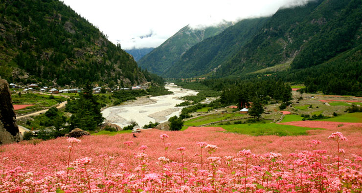 RAKCHAM VILLAGE – SANGLA VALLEY